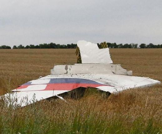 Малазийский лайнер стал жертвой украинской агрессии? 0004