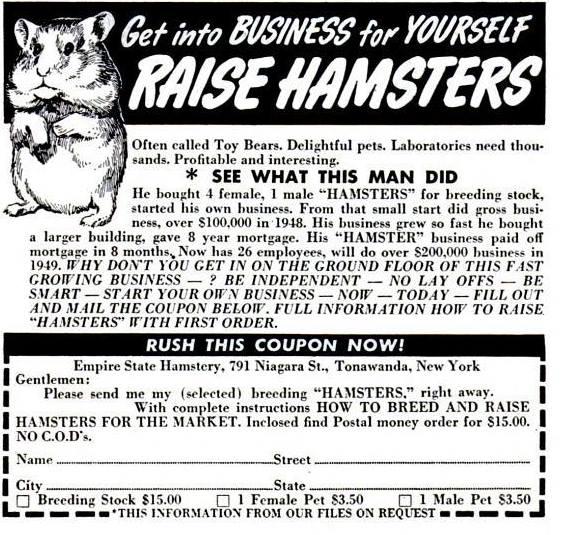 hamsteradd