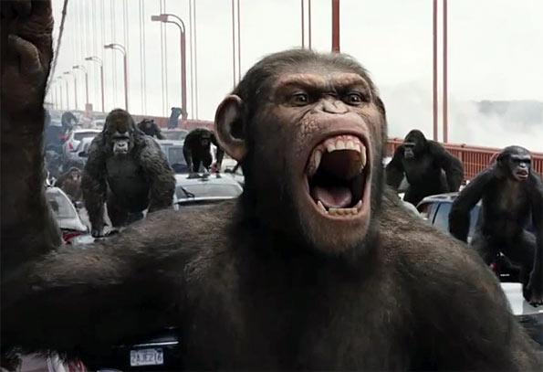 origen-simios-pic