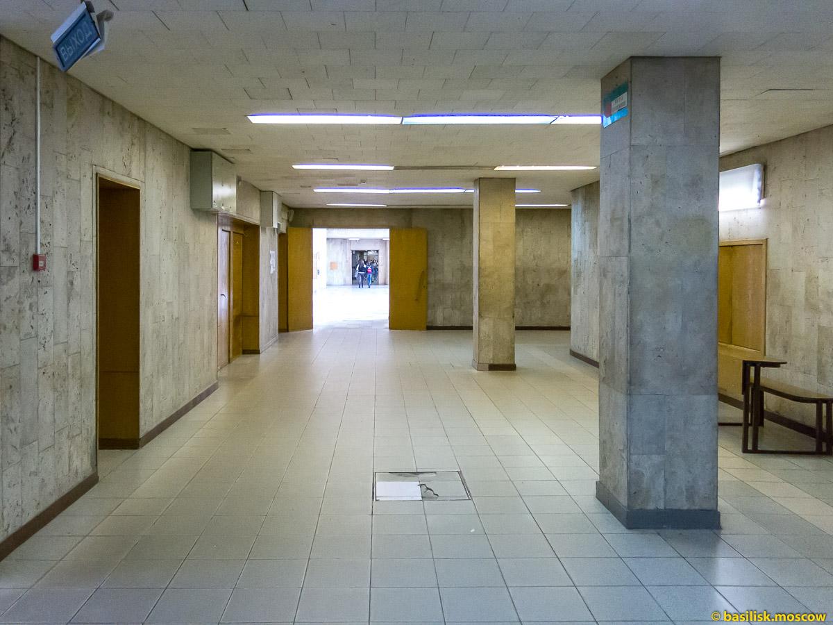 Второй гуманитарный корпус МГУ. Апрель 2017