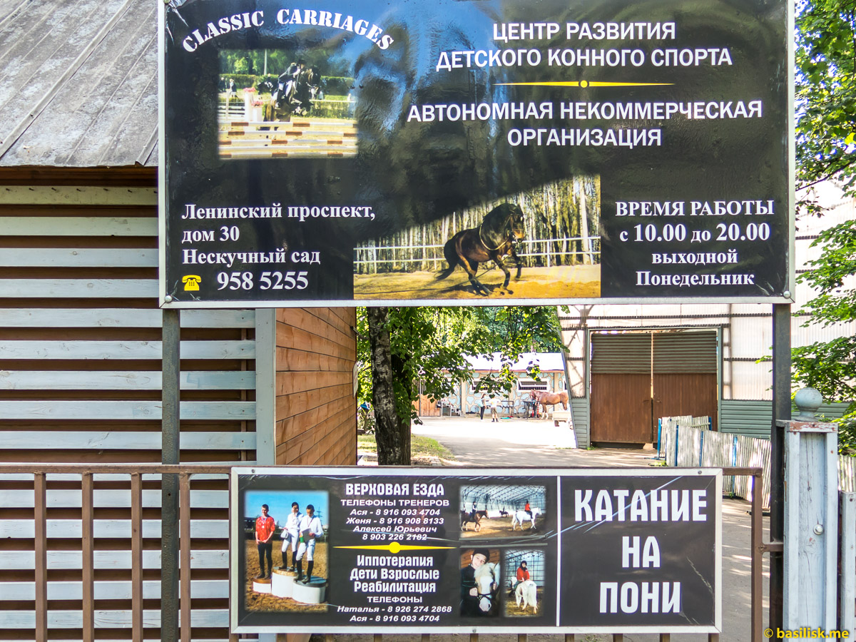 Центр детского конного спорта. Нескучный сад. Москва. Июнь 2018