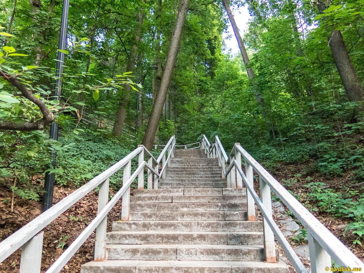 Лестница наверх. Парк Воробьёвы горы. Москва. Июнь 2018