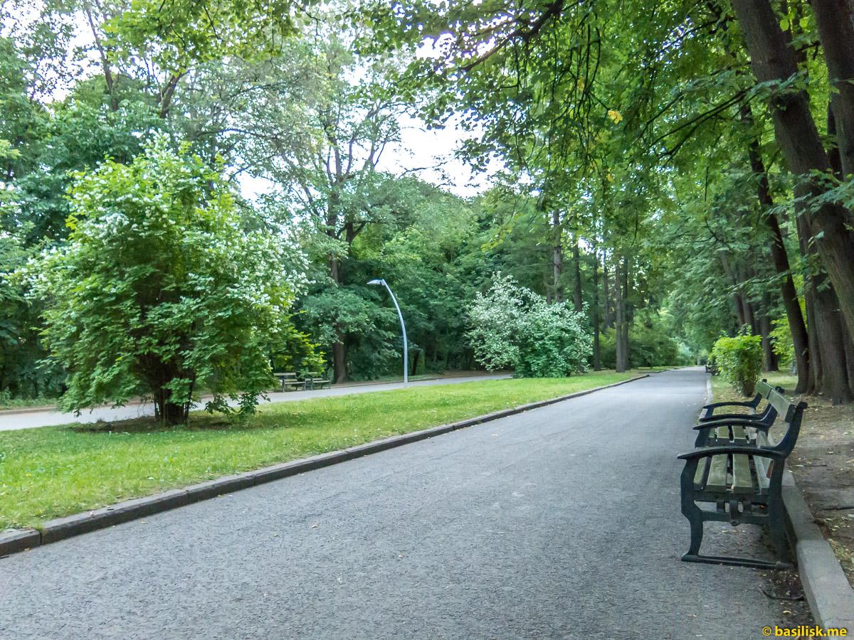 Парк Воробьёвы горы. Москва. Июнь 2018