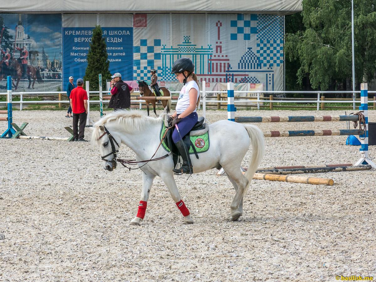 Люди и лошади. Ипподром на ВДНХ. Москва. Май 2018