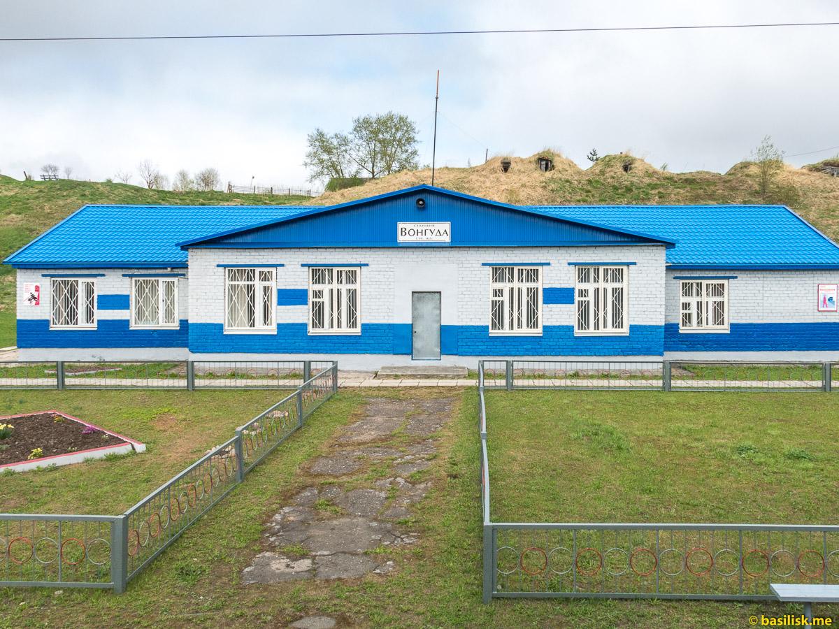 Станция Вонгуда. Поезд 6513 Вонгуда - Обозерская. Архангельская область. Май 2018