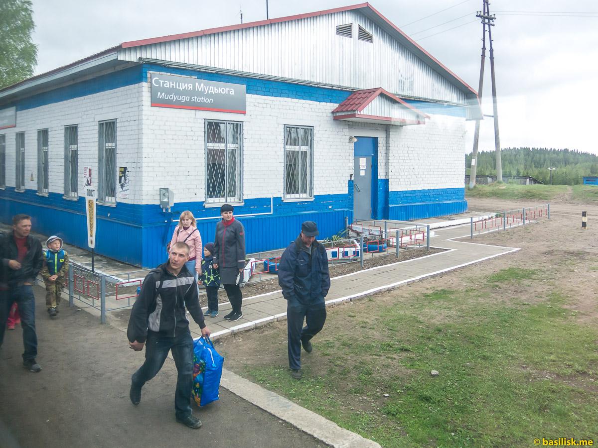Станция Мудьюга. Поезд 6513 Вонгуда - Обозерская. Архангельская область. Май 2018