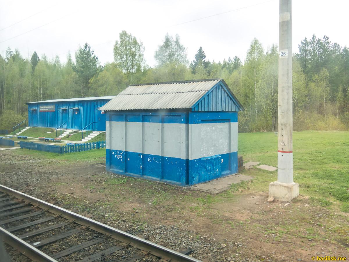 Станция Костринский ручей. Поезд 6513 Вонгуда - Обозерская. Архангельская область. Май 2018