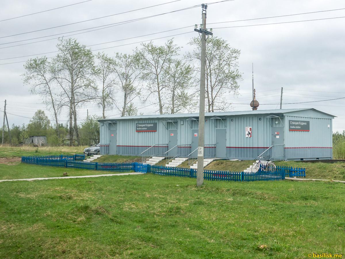 Станция Кодино. Поезд 6513 Вонгуда - Обозерская. Архангельская область. Май 2018