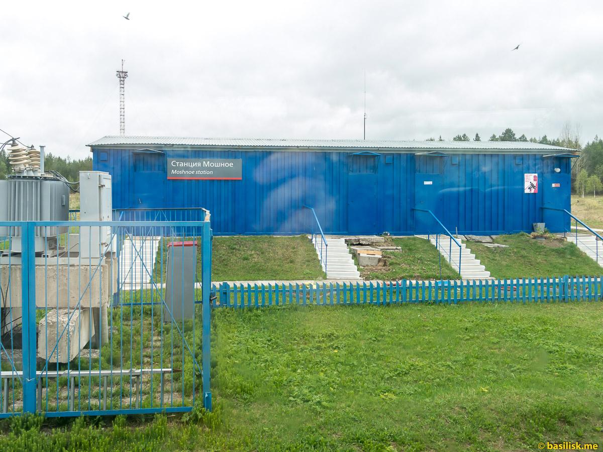 Станция Мошное. Поезд 6513 Вонгуда - Обозерская. Архангельская область. Май 2018