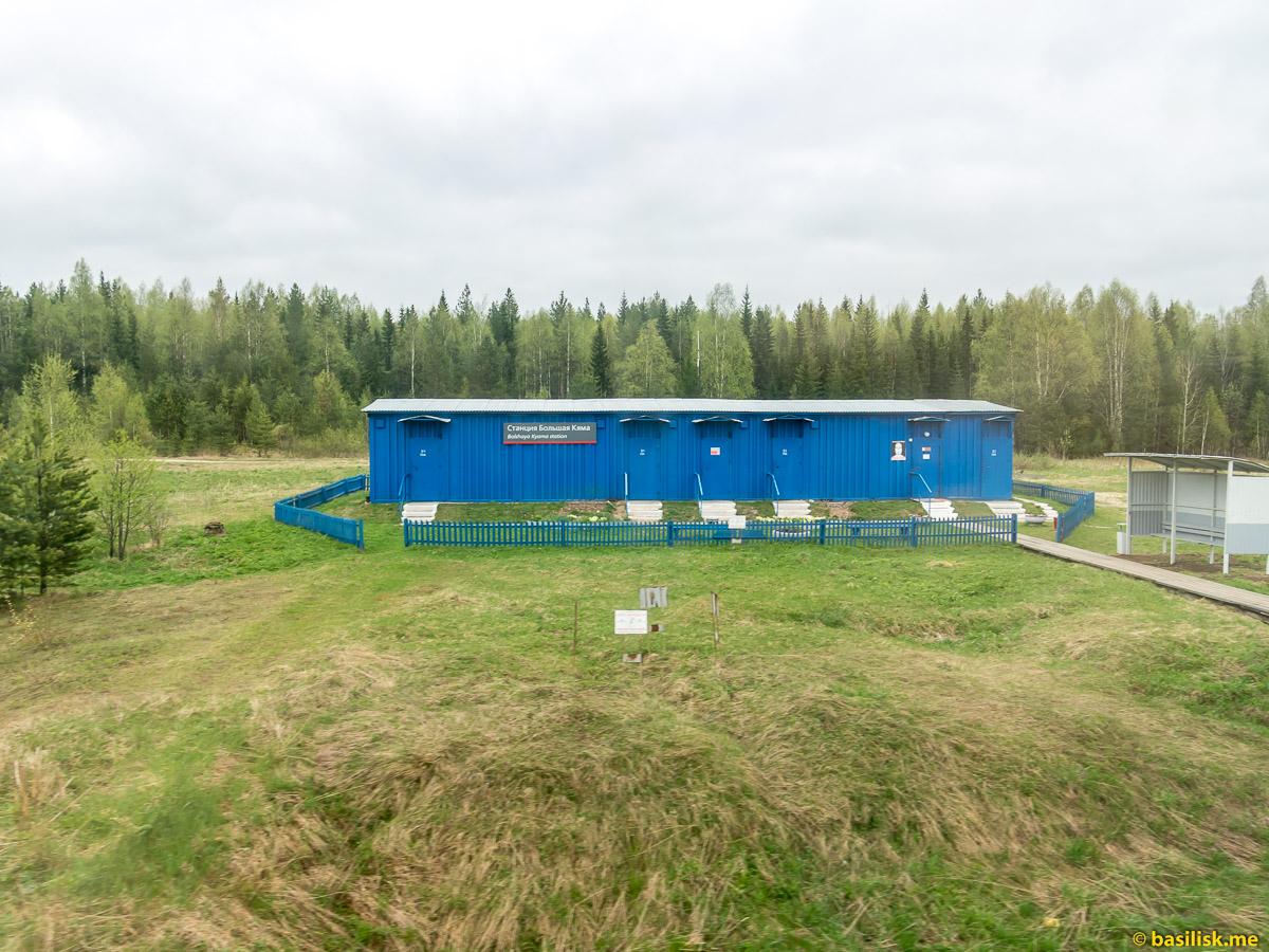 Станция Большая Кяма. Поезд 6513 Вонгуда - Обозерская. Архангельская область. Май 2018