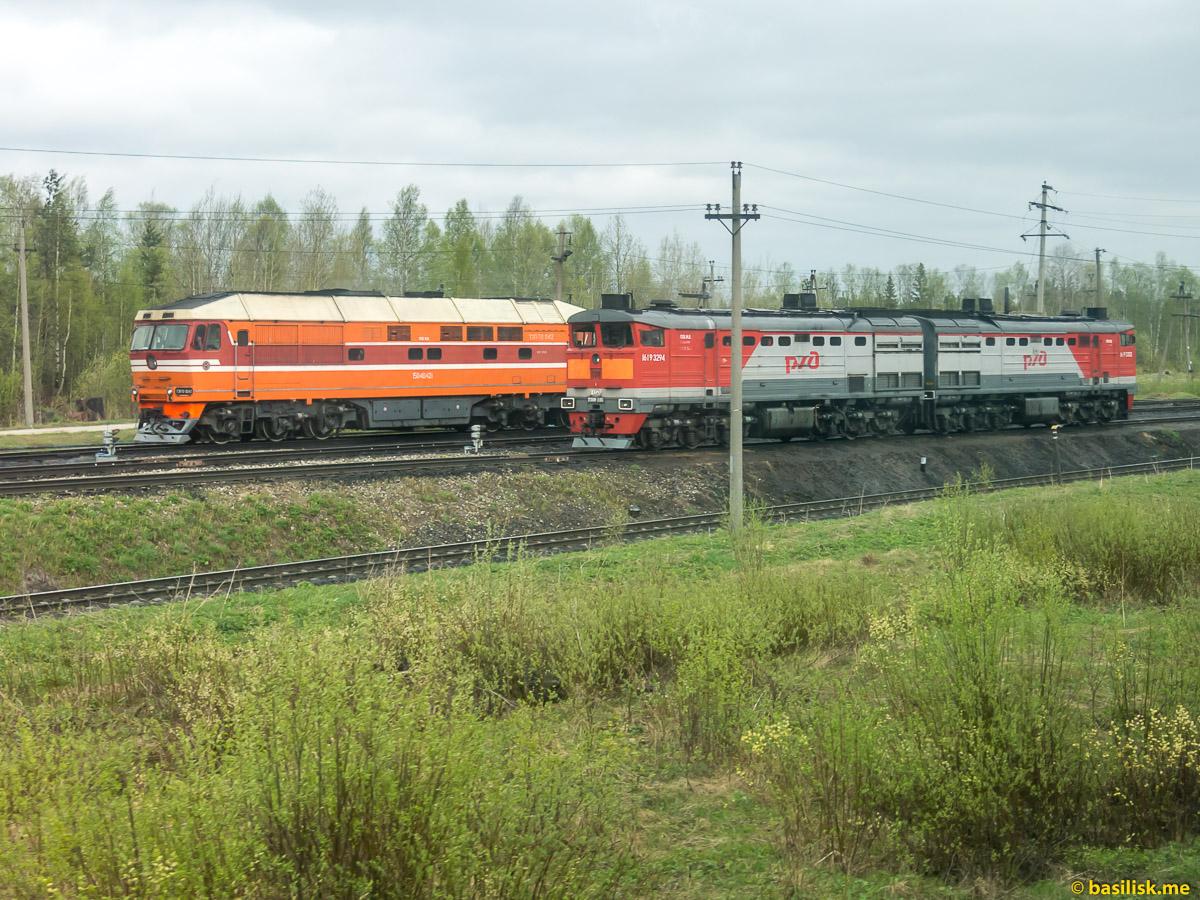 Тепловозы. Поезд 6513 Вонгуда - Обозерская. Архангельская область. Май 2018