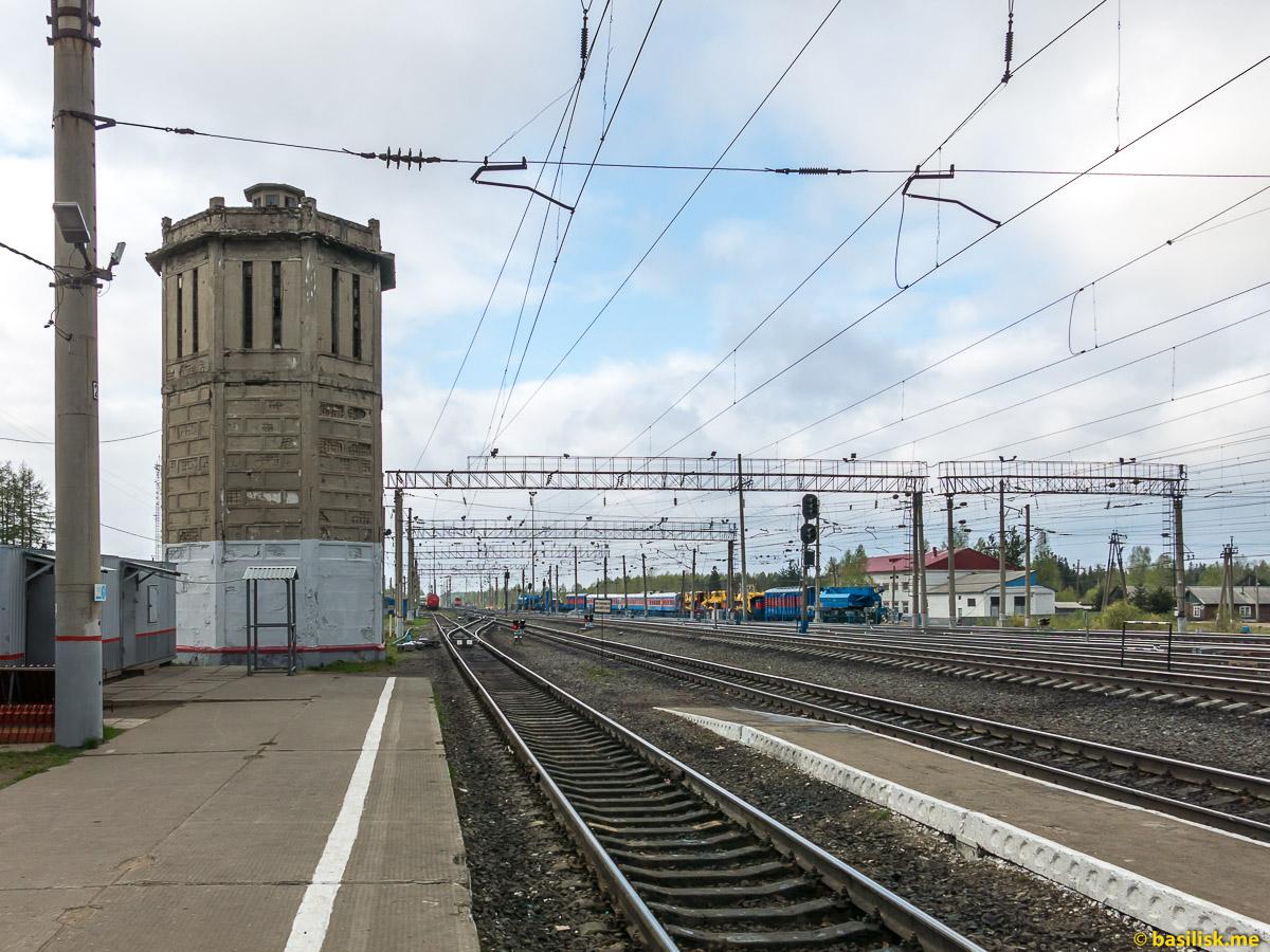 Станция Обозерская. Архангельская область. Май 2018