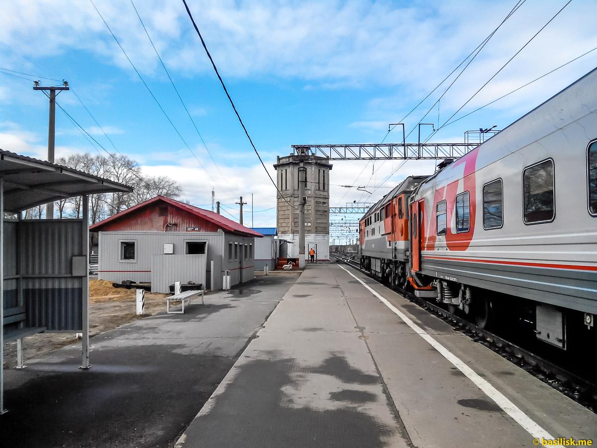 Перрон станции Обозерская. Поезд 6532 Обозерская - Онега. Архангельская область. Май 2018