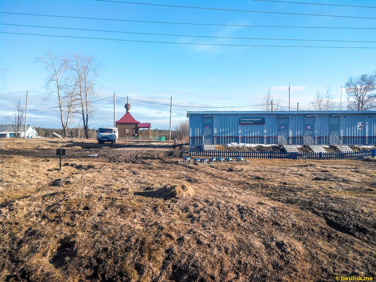 Станция Кодино. Поезд 6532 Обозерская - Онега. Архангельская область. Май 2018