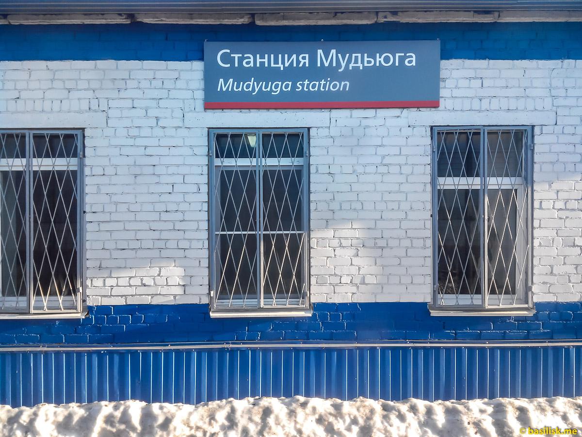 Станция Мудьюга.  Поезд 6532 Обозерская - Онега. Архангельская область. Май 2018