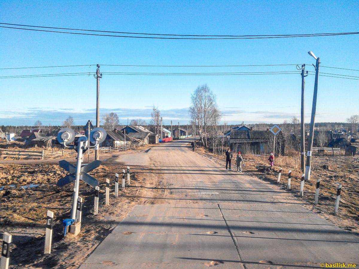 Переезд в посёлке Глазаниха. Поезд 6532 Обозерская - Онега. Архангельская область. Май 2018