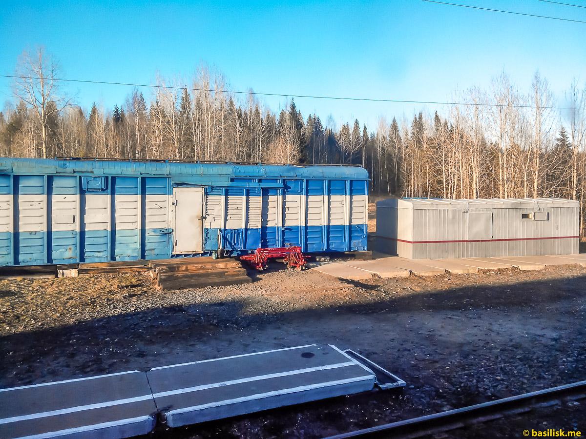 Станция Тесовка. Поезд 6532 Обозерская - Онега. Архангельская область. Май 2018