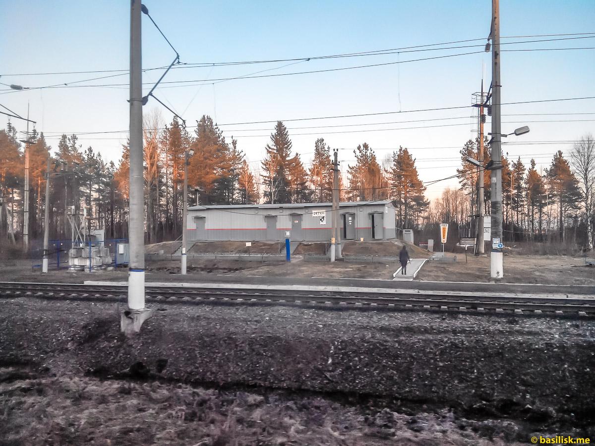 Станция Пост 243км. Поезд 6532 Обозерская - Онега. Архангельская область. Май 2018