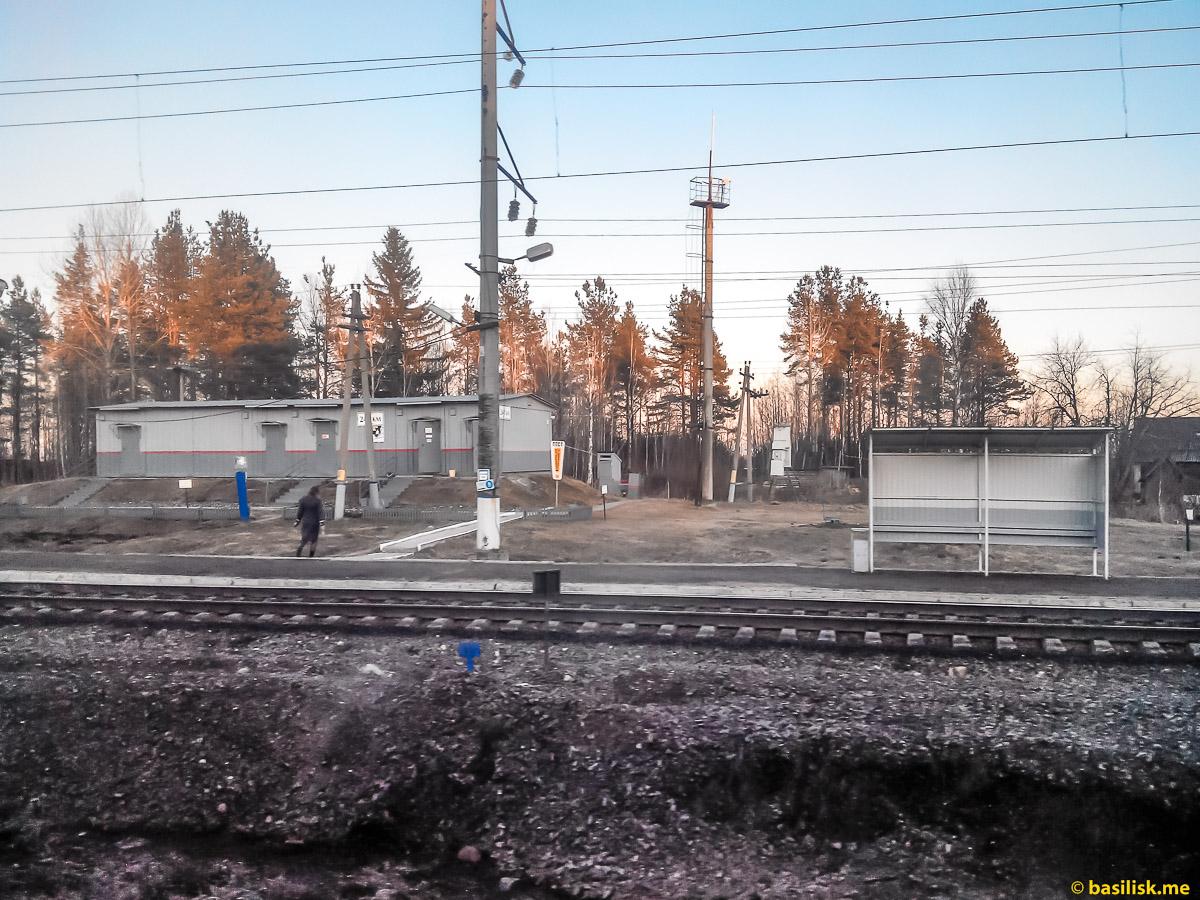Станция Пост 243км. Поезд 6532 Обозерская - Онега. Архангельская область.Май 2018