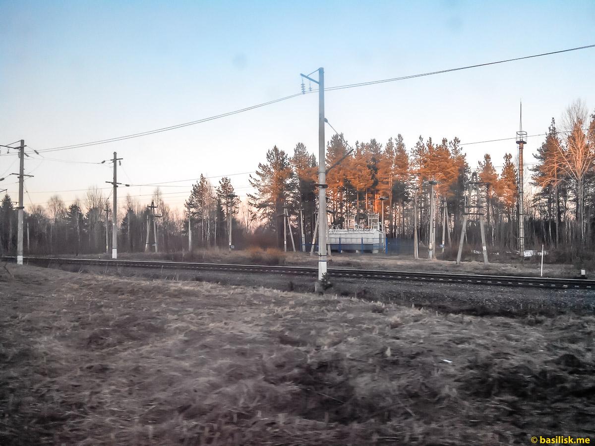 Поезд 6532 Обозерская - Онега. Архангельская область. Май 2018