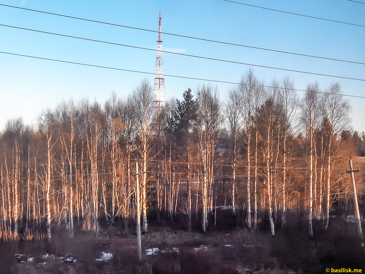 Телевышка. Поезд 6532 Обозерская - Онега. Архангельская область. Май 2018