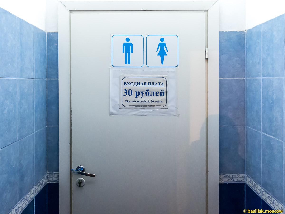 Исаакиевская площадь. Исаакиевский собор. Платный туалет. Зимний Петербург. Январь 2018