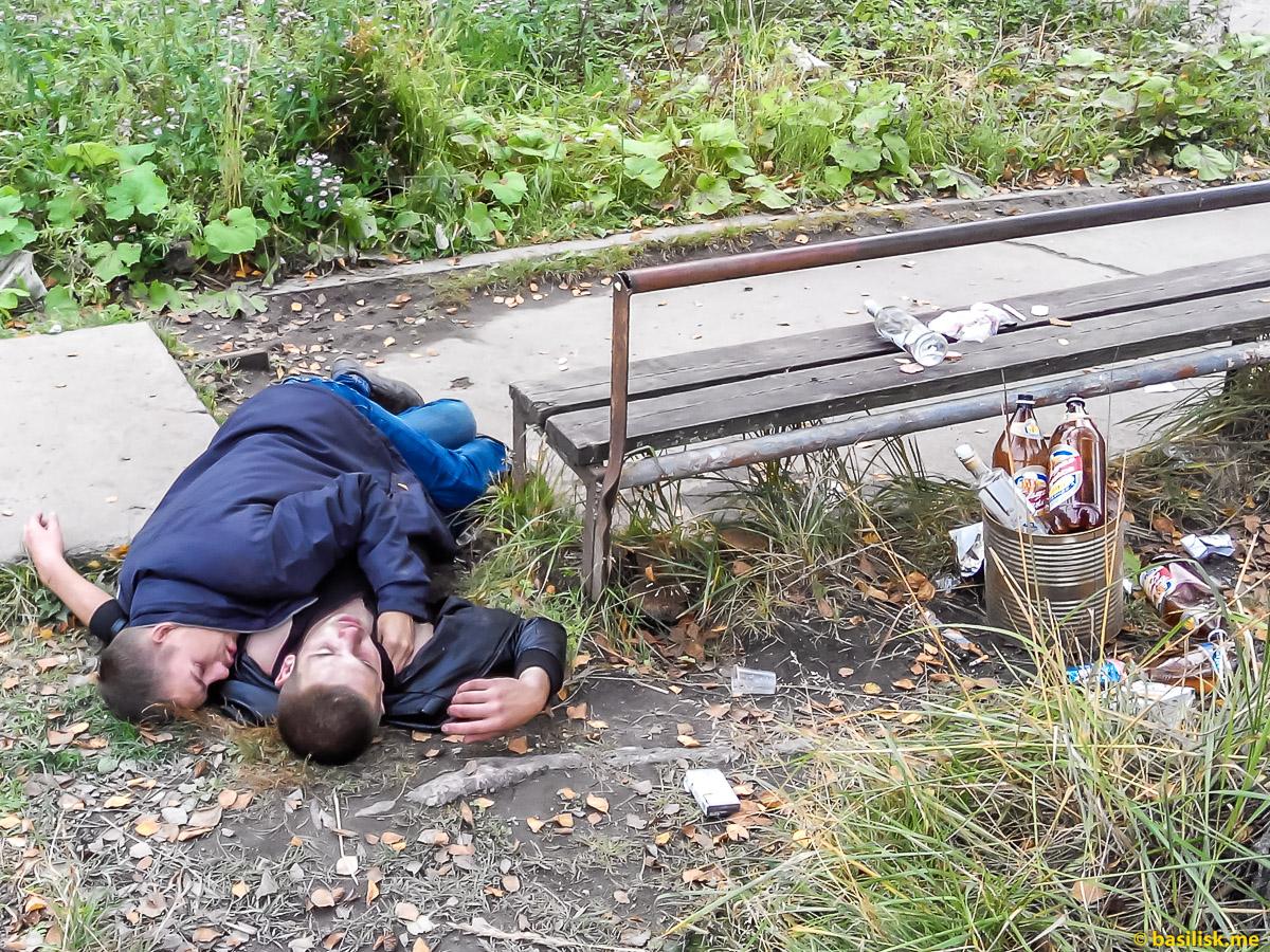 Онежские пьяницы. Последствия употребления настойки боярышника. Октябрь 2017