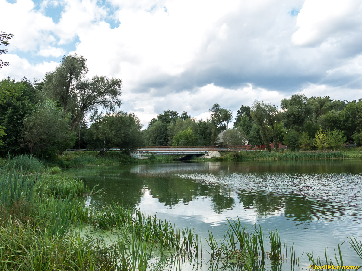 Кратовское озеро. Верёвочный парк. Кратово. Московская область. Август 2017