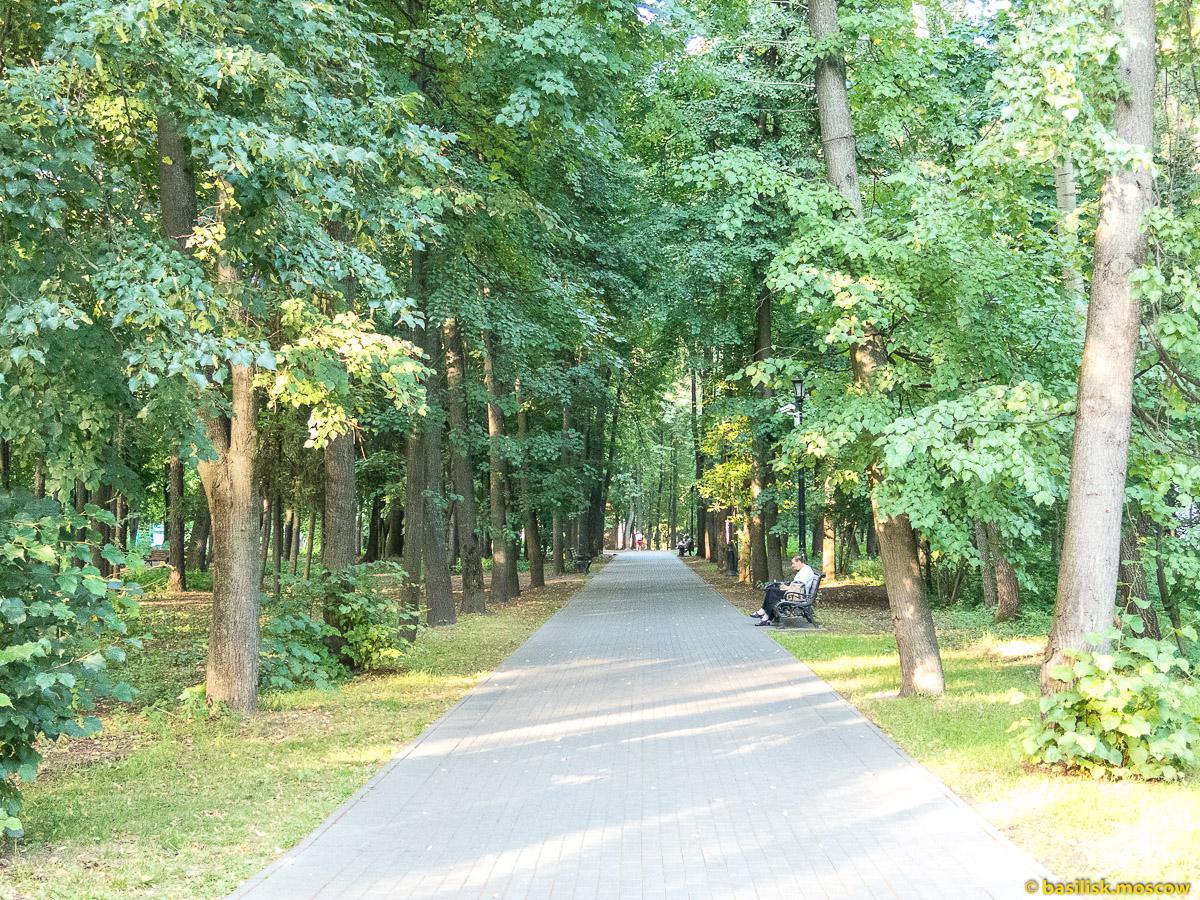 Аллея Останкинского парка. Парк Останкино. Москва. Август 2017
