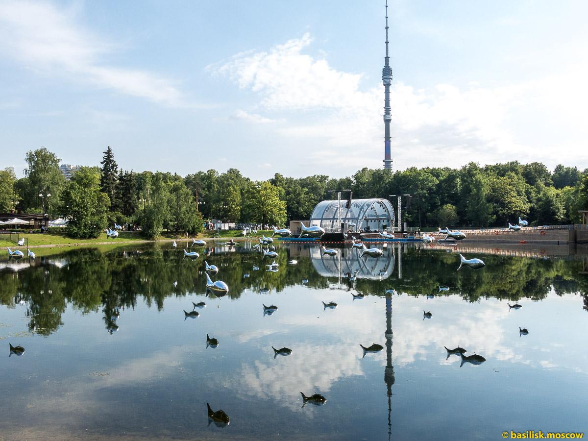 Пруд в парке Останкино. Парк Останкино. Москва. Август 2017
