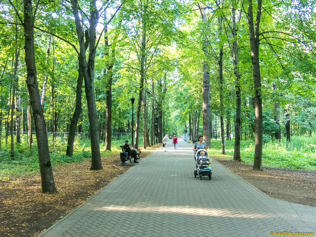 Аллеи Останкинского парка. Парк Останкино. Москва. Август 2017