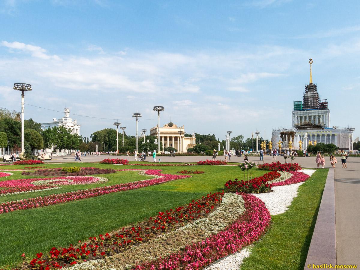 Клумба на центральной аллее. Прогулка по ВДНХ. Москва. Август 2017