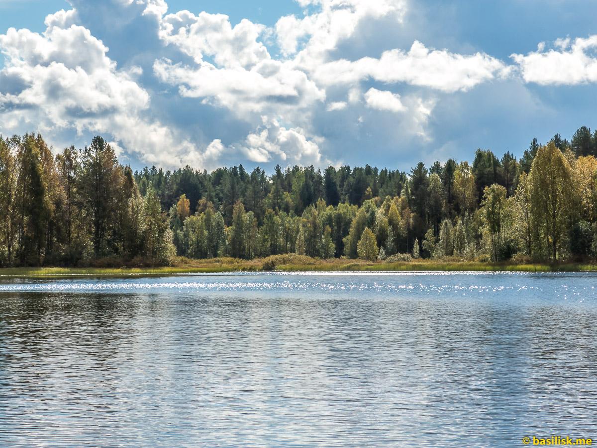 Вода и небо. Лесное озеро в Архангельской области. Андозеро. Сентябрь 2016