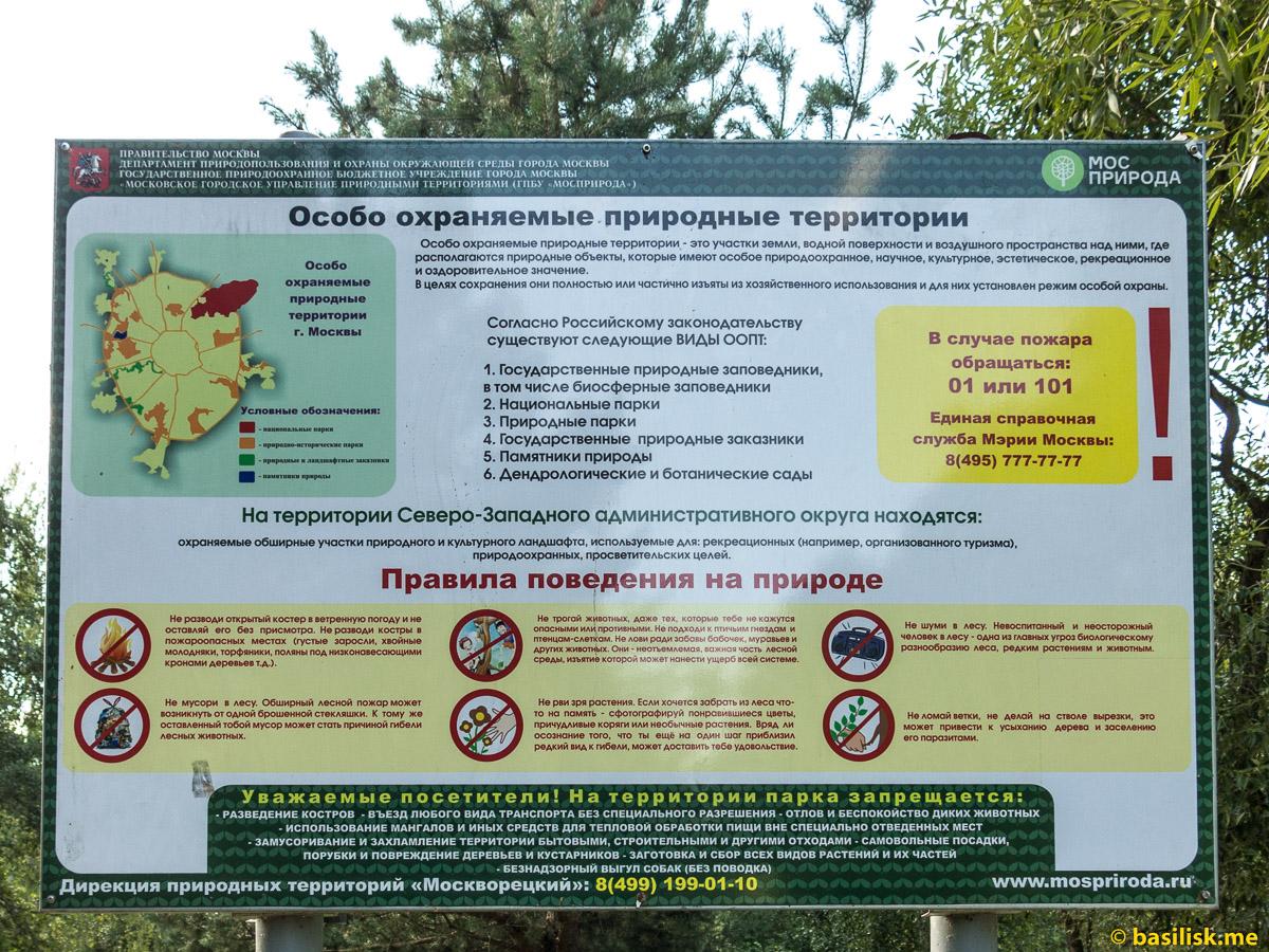 Лесопарк-остров Серебряный Бор. Москва. Август 2018