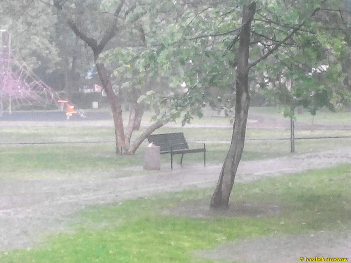 Сильный дождь в Гончаровском парке. После дождя. Москва. Июль 2017