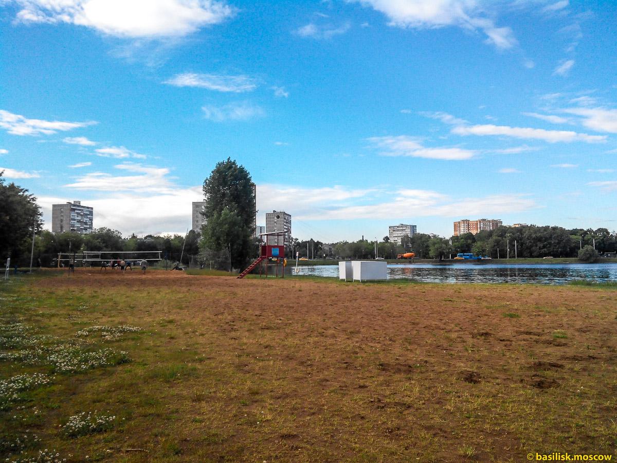 Тимирязевский парк. Большой садовый пруд.