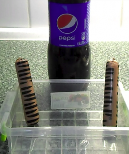 Что будет, когда сосиски залить в Pepsi и так держать 6 часов 600.png