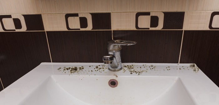 Mould in the bathroom: Prevent and remove!