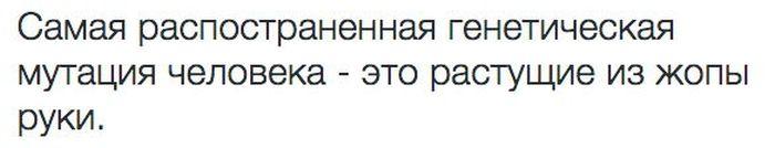 1436221494_podborka_19