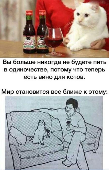 1440022914_podborka_17