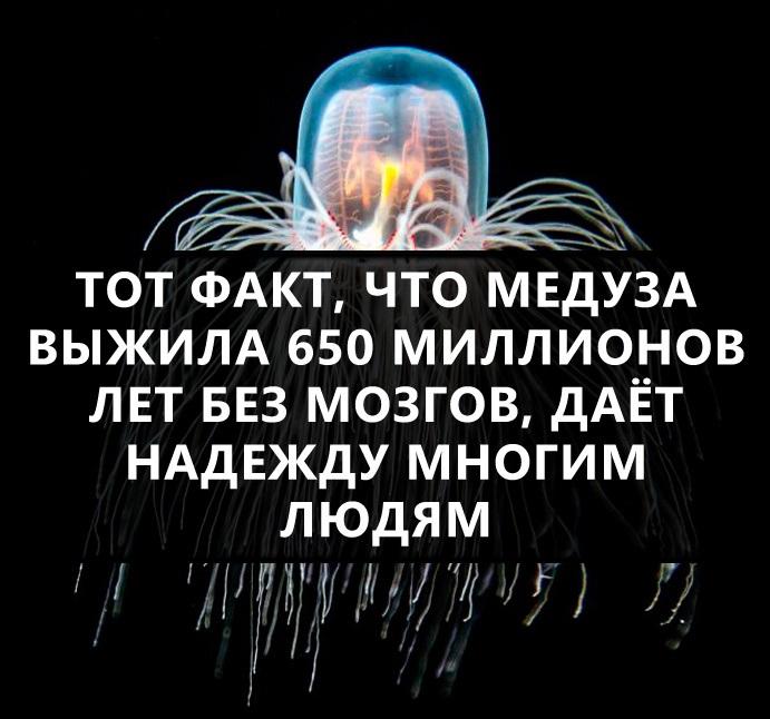 6469e0eec8da049b0961