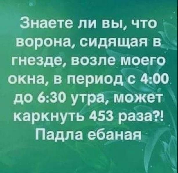 DJgDPwg0YlU