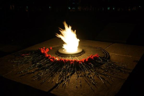 Цветы тянутся к огню