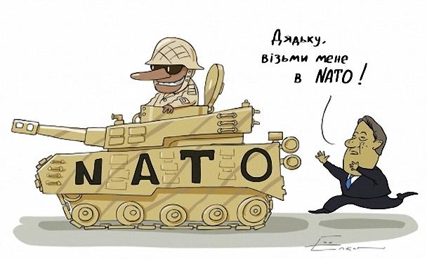 Возьмите в НАТО