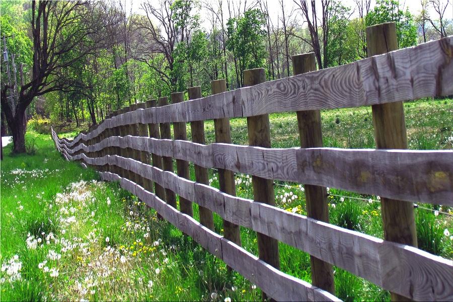 Пограничный забор.jpg
