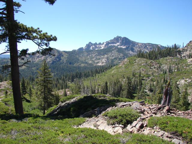 Vista with Sierra Buttes