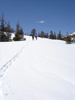 Day 1 - Snowshoeing