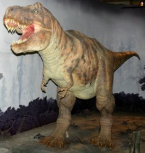 300px-Tyrannosaurus_model_at_NHM