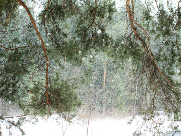 snowfallapr