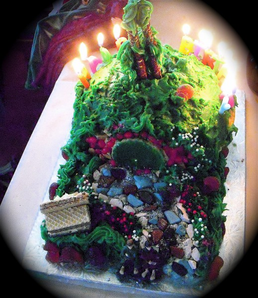 Bag End Cake, Maryland Moot 9-10